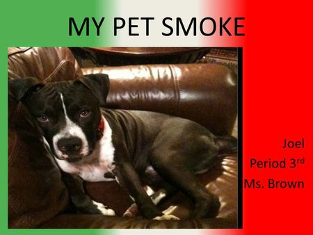 MY PET SMOKE Joel Period 3 rd Ms. Brown. Average cost of a blue nose pit-bull Around 500 dollars for a real one.