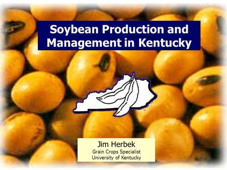 Soybean Production and Management in Kentucky Jim Herbek Grain Crops Specialist University of Kentucky.