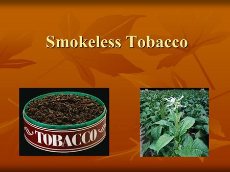 Smokeless Tobacco. Types Of Smokeless Tobacco Chewing Tobacco Snuff Snus.