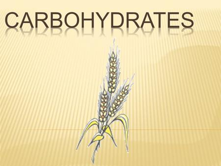 1. We get most of our carbohydrates from the GRAINS group. 2. FRUITS and VEGETABLES are also a good source of carbohydrates. 3. Almost all of our carbohydrates.