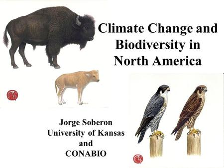 Climate Change and Biodiversity in North America Jorge Soberon University of Kansas and CONABIO.