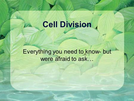 Cell Division Everything you need to know- but were afraid to ask…