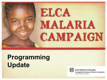 Programming Update. Malaria Programs: Best Practices The programs we support.