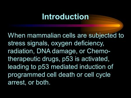 When mammalian cells are subjected to stress signals, oxygen deficiency, radiation, DNA damage, or Chemo- therapeutic drugs, p53 is activated, leading.
