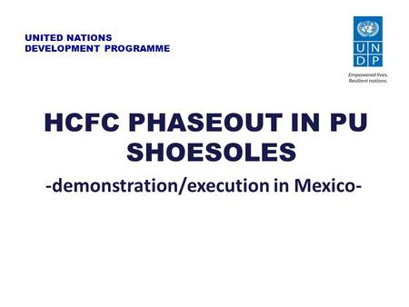UNITED NATIONS DEVELOPMENT PROGRAMME HCFC PHASEOUT IN PU SHOESOLES -demonstration/execution in Mexico-