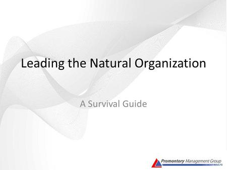 Leading the Natural Organization A Survival Guide.