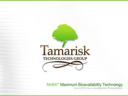 Overview  Founded in 2008  Privately held technology development company  Reorganized under new ownership as Tamarisk Technologies Group in 2014 About.