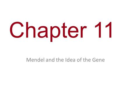 Mendel and the Idea of the Gene
