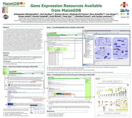 Gene Expression Resources Available from MaizeGDB Kokulapalan Wimalanathan 1, Jack Gardiner 4 5, Bremen Braun 2, Ethalinda KS Cannon 4, Mary Schaeffer.