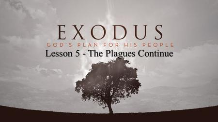 Lesson 5 - The Plagues Continue. Exodus 8:15 But when Pharaoh saw that there was relief, he hardened his heart and did not heed them, as the Lord had.