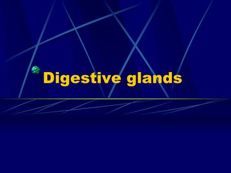 Digestive glands. General outline  small digestive glands distributed in the wall of digestive tract esophageal glands, gastric glands and intestine.