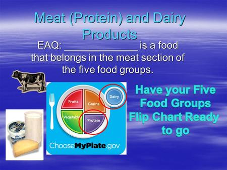 Meat (Protein) and Dairy Products EAQ: _____________ is a food that belongs in the meat section of the five food groups.