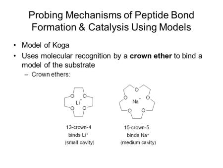 Probing Mechanisms of Peptide Bond Formation & Catalysis Using Models Model of Koga Uses molecular recognition by a crown ether to bind a model of the.