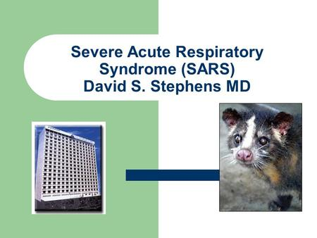 Severe Acute Respiratory Syndrome (SARS) David S. Stephens MD.