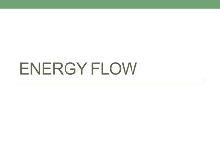 ENERGY FLOW. All living things need energy to survive What is the source of that energy? The Sun!