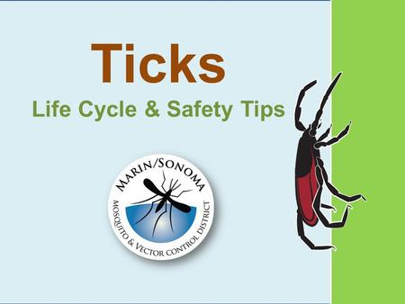 Ticks Life Cycle & Safety Tips. Ticks need blood to grow and lay eggs.