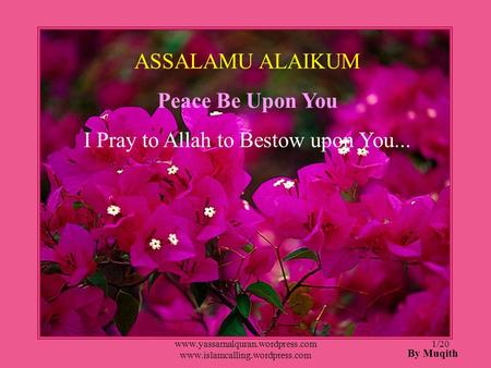 I Pray to Allah to Bestow upon You...