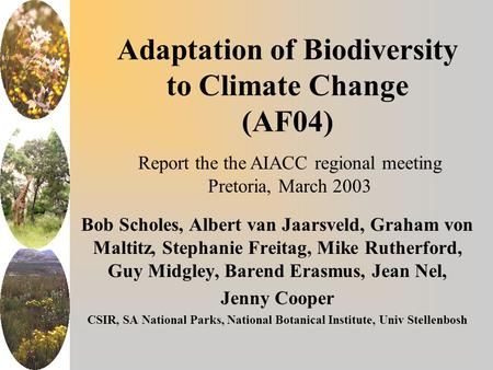 Adaptation of Biodiversity to Climate Change (AF04) Bob Scholes, Albert van Jaarsveld, Graham von Maltitz, Stephanie Freitag, Mike Rutherford, Guy Midgley,