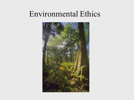 Environmental Ethics. Definitions Moral Agents –Those who have the freedom and rational capacity to be responsible for choices –Those capable of moral.