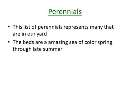 Perennials This list of perennials represents many that are in our yard The beds are a amazing sea of color spring through late summer.
