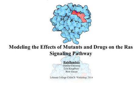 Modeling the Effects of Mutants and Drugs on the Ras Signaling Pathway RuleBenders Gianluca Arianna Lyle Kingsbury Piotr Gauza Lehman College CMACS Workshop,