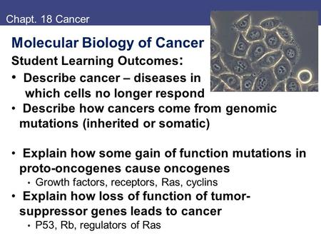 Chapt. 18 Cancer Molecular Biology of Cancer Student Learning Outcomes : Describe cancer – diseases in which cells no longer respond Describe how cancers.