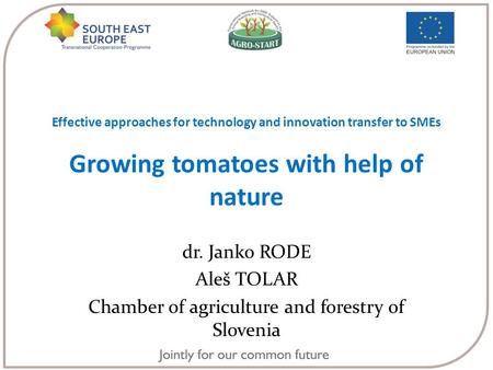 Effective approaches for technology and innovation transfer to SMEs Growing tomatoes with help of nature dr. Janko RODE Aleš TOLAR Chamber of agriculture.