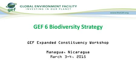 GEF Expanded Constituency Workshop Managua, Nicaragua March 3-4, 2015 GEF 6 Biodiversity Strategy.