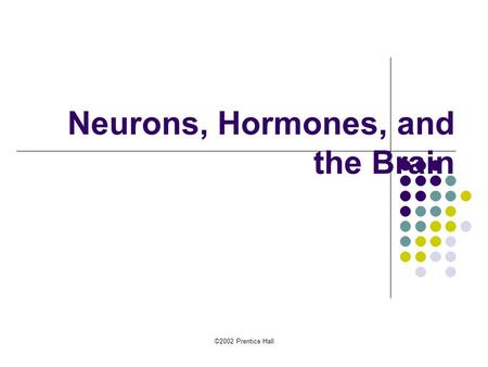 Neurons, Hormones, and the Brain