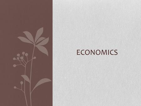 ECONOMICS. LEVELS OF ECONOMIC DEVELOPMENT Less developed - refers to the nations with the lowest indicators of development; generally characterized by.