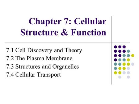 Chapter 7: Cellular Structure & Function 7.1 Cell Discovery and Theory 7.2 The Plasma Membrane 7.3 Structures and Organelles 7.4 Cellular Transport.