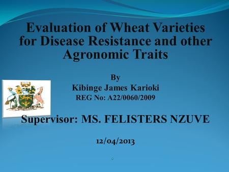 Evaluation of Wheat Varieties for Disease Resistance and other Agronomic Traits By Kibinge James Karioki REG No: A22/0060/2009 Supervisor: MS. FELISTERS.