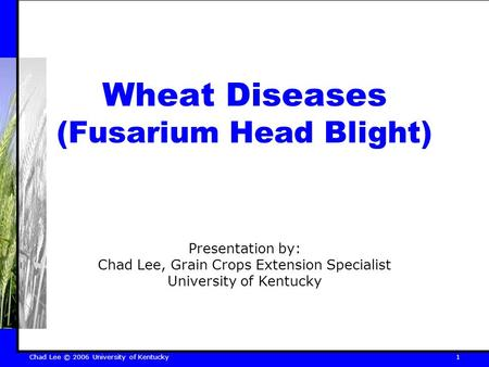 Chad Lee © 2006 University of Kentucky 1 Wheat Diseases (Fusarium Head Blight) Presentation by: Chad Lee, Grain Crops Extension Specialist University of.
