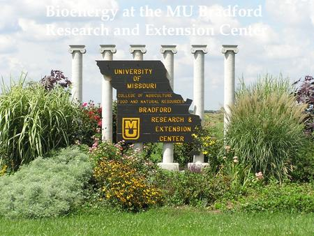 Bioenergy at the MU Bradford Research and Extension Center.