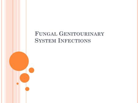 F UNGAL G ENITOURINARY S YSTEM I NFECTIONS. Bladder and kidneys infections Valvovaginal infections.