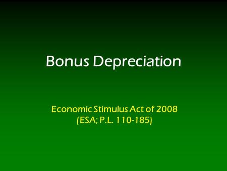 Bonus Depreciation Economic Stimulus Act of 2008 (ESA; P.L. 110-185)
