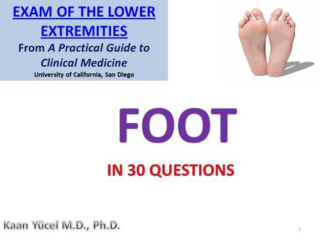 FOOT IN 30 QUESTIONS Exam of the Lower Extremities