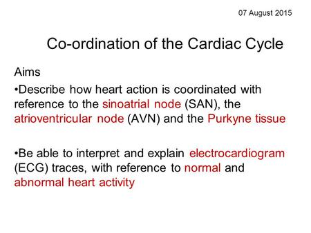 Co-ordination of the Cardiac Cycle Aims Describe how heart action is coordinated with reference to the sinoatrial node (SAN), the atrioventricular node.