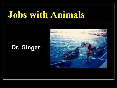 Jobs with Animals Dr. Ginger. Do you want to… Study Animals in the Wild Study Animals in the Laboratory Take Care of Animals at Zoos Take Care of Animals.