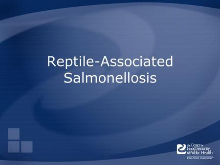Reptile-Associated Salmonellosis. Overview Organism History Epidemiology Transmission Disease in Humans Disease in Animals Prevention and Control Center.