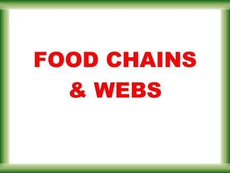 FOOD CHAINS & WEBS. the ultimate energy source consumer 1 Energy Flow The sun's energy flows into organisms that can change the sunlight into food then.