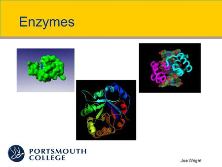 Joe Wright Enzymes. Joe Wright What are Enzymes? Globular proteins Biological catalysts Do not change after reaction They are found in small quantities.