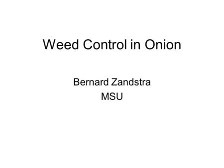 Weed Control in Onion Bernard Zandstra MSU. Review of 2006 1. Early season was dry; preemergence herbicides were not very effective 2. In general, postemergence.