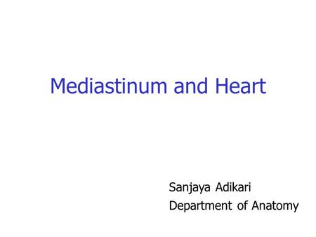 Mediastinum and Heart Sanjaya Adikari Department of Anatomy.