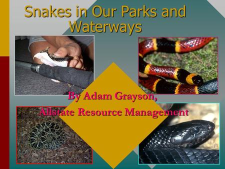 Snakes in Our Parks and Waterways By Adam Grayson, Allstate Resource Management.