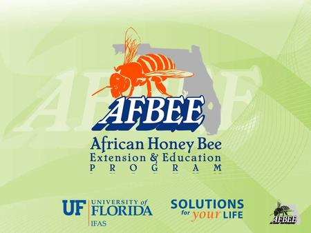 Safe removal of Africanized honey bee colonies Developed by: Dr. Philip Koehler Adapted by: Michael K. O'Malley Dr. Jamie.