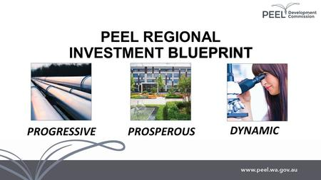 BLUEPRINT PEEL REGIONAL INVESTMENT BLUEPRINT PROGRESSIVEPROSPEROUS DYNAMIC.