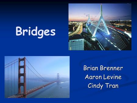 Bridges Brian Brenner Aaron Levine Cindy Tran. Some Uses of Bridges Walkways Walkways Highways/Roads Highways/Roads Railways Railways Pipelines Pipelines.