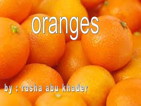 orange trees were found to be the most cultivated fruit tree in the world. production being particularly prevalent in Brazil and the U.S. states of Florida.