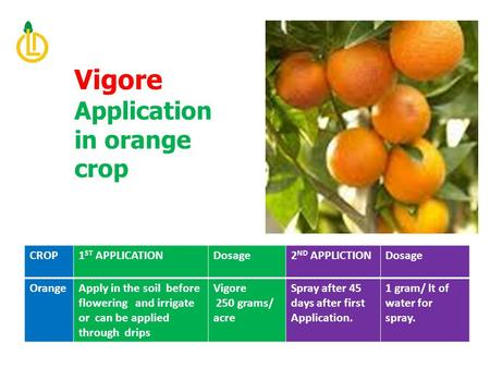CROP1 ST APPLICATIONDosage2 ND APPLICTIONDosage OrangeApply in the soil before flowering and irrigate or can be applied through drips Vigore 250 grams/